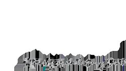 Diana Jestratijevic logo in white color